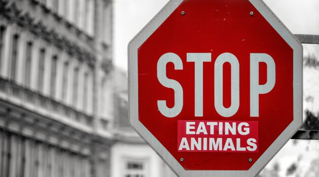 Eat a vegan diet for the animals